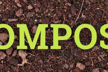 Q&A with Master Seki About Organic Compost
